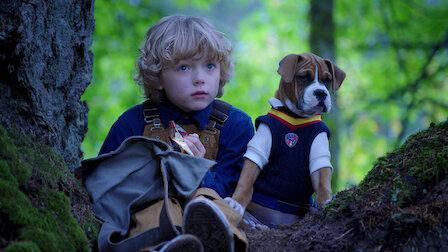 觀賞進入原始森林。第 1 季第 9 集。